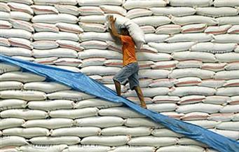 """""""نور الدين"""" : مافيا الأرز ستدفع بسعره لـ20 جنيهًا.. والتجار استغلوا طيبة """"المصيلحي"""" والهندي لا يصلح"""