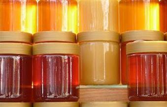 """ضبط أطنان من العسل ومستلزمات إنتاج فاسدة داخل مصنع """"بدون ترخيص"""" بالإسكندرية"""