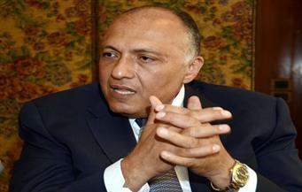 بيان وزراء خارجية مصر تونس والجزائر يؤكد على رفض الخيار العسكري بليبيا