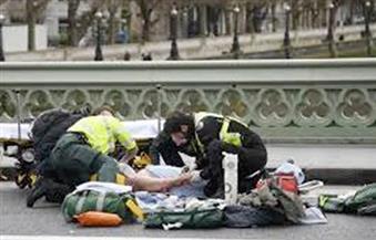 أحزاب تدين حادث لندن وتطالب المجتمع الدولي بالتكاتف للقضاء على الإرهاب