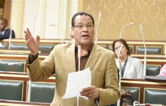 نائب يطالب الرئيس السيسي بالعفو عن محامي المنيا بجلسة البرلمان