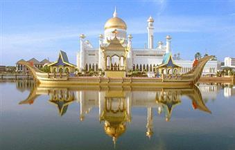 ممتلكات سلطان بروناي قصر ذهبي يضم 1788 غرفة 10 أنواع دلافين 9 طائرات و1747 سيارة و20 مليار دولار بوابة الأهرام