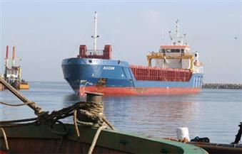 ميناء الصيد بالبرلس يستقبل السفينة رقم 33 المحملة بمعدات محطة الكهرباء العملاقة