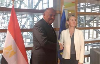 شكري يجتمع بوزراء خارجية الاتحاد الأوروبي