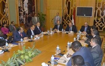وزير الخارجية للصحفيين والإعلاميين الأفارقة: مصر تسعى لتحقيق تطلعات شعوب القارة بالتعاون مع الأشقاء الأفارقة