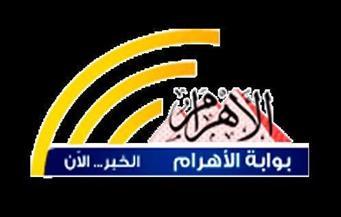 إصابة رئيس نيابة.. الأزهر يدين.. تأشيرة دخول سودانية.. ضبط مشتبه به بنشرة الثالثة