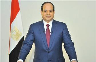 """""""البورسعيدية"""" يعلنون تأييدهم للرئيس السيسي في مؤتمر حاشد الجمعة المقبلة"""