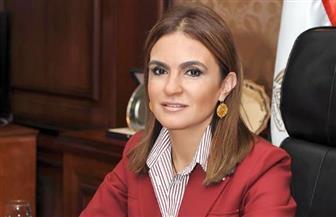 وزيرة الاستثمار تبحث مع المدير التنفيذي لشركة كورية كبرى زيادة استثماراتها في مصر
