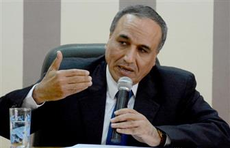 عبدالمحسن سلامة : مصر تواجه الإرهاب بالوكالة عن العالم