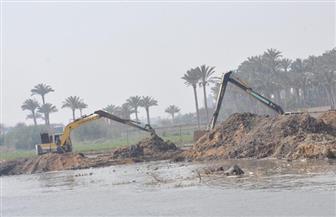 إزالة التعديات عن روافد النيل وبحيرة مريوط بالإسكندرية