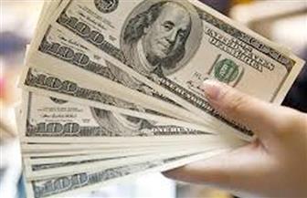 ثبات سعر الدولار اليوم.. وارتفاعه قرشًا في البنوك الخاصة