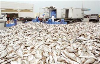 قنصلية مصر بجدة تنجح في إنهاء أزمة الصيادين المصريين وتدشين تعاون مع إريتريا في الثروة السمكية