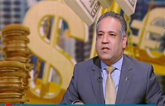 """الشرقاوي: مصنع للمواسير باستثمارات 500 مليون يورو أول مشروعات """"خليجيون في حب مصر"""""""