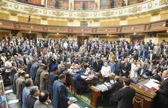 مجلس النواب يرفض طلب رفع الحصانة عن أحمد فؤاد أباظة