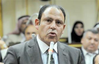 برلماني يطالب بإعفاء دور العبادة من مصروفات الكهرباء