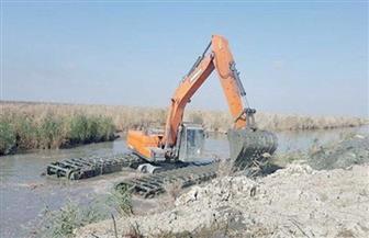 """""""المسطحات المائية"""" بالإسكندرية تواصل حملاتها لإزالة تعديات """"مريوط"""""""