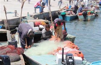 مدير بحيرة البردويل: مكافأة ألف جنيه لضبط القوارب خلال فترة المنع