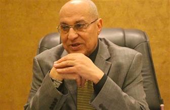 عضو نادي القضاة: خروج 44% للتعديلات الدستورية يعبر عن تحسن الوعي السياسي لدى الشعب المصري