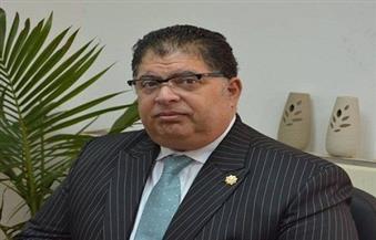حفيلة: البنك المركزي المصري يحل مشكلات 14 مصنعا متعثرا يوميا