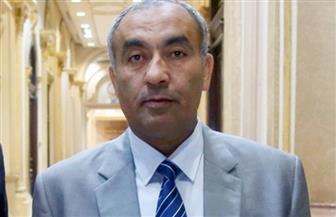 عضو مجلس نواب: وزارة التخطيط  توافق على إنشاء مستشفى حميات جديد بقرى كفرالشيخ