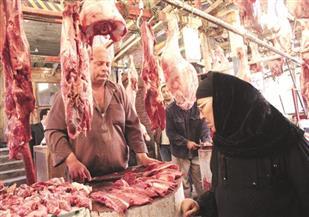 أحمـد البري يكتب: الطريق إلى السيطرة على الأسعار