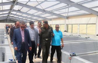 محافظ كفرالشيخ ورئيس الشركة الوطنية للثروة السمكية يتفقدان مشروع الاستزراع السمكي ببركة غليون | صور