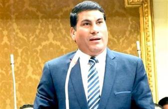 """وكيل """"حقوق الإنسان بالبرلمان"""" يوجه استجوابًا لرئيس الوزراء ووزير الإسكان"""