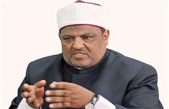 الأعلى لتنظيم الإعلام: التحقيق في شكوى شومان ضد أحمد سالم لم ينته
