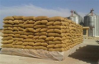 رصيد صومعة حبوب ميناء دمياط 137 ألف طن قمح