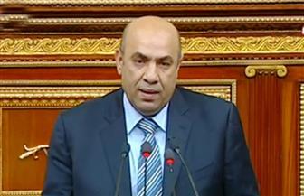 """عضو """"تشريعية البرلمان"""": السيسي حريص على """"المكاشفة والمصارحة"""" منذ توليه السلطة"""