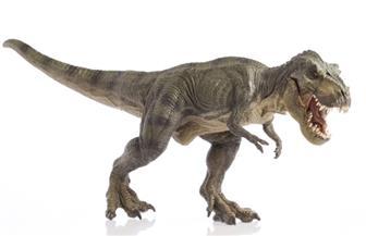 """اكتشاف """"آخر ديناصور إفريقي"""" في منجم بالمغرب"""