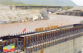 تأجيل دعوى حماية مصالح مصر المائية في نهر النيل لـ ١ يونيو المقبل