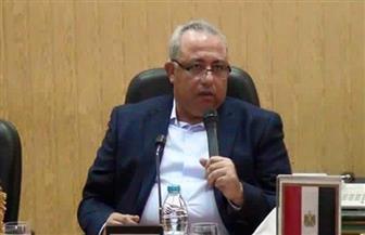 """تخصيص 6 قراريط من أملاك الدولة في """"أنشاص الرمل"""" لإقامة مركز شباب بالشرقية"""