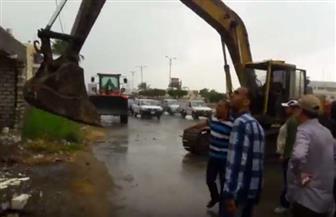 استعادة 207 أفدنة من أملاك الدولة في دمياط | فيديو