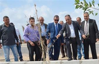 محافظ كفر الشيخ يتابع تطوير طريق بركة غليون وإنهاء أعمال الرصف بتكلفة 112 مليون جنيه