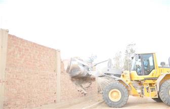 استرداد 251 فدان أراضى الدولة المنهوبة بالجيزة| صور