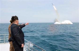 بريطانيا تهدد كوريا الشمالية بالخيار العسكري في أزمتها النووية