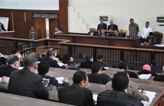 """اليوم.. استكمال محاكمة 213 متهمًا من """"أنصار بيت المقدس"""""""