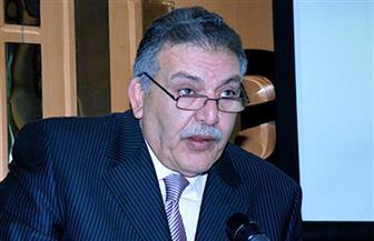 أحمد الوكيل: مصر سوق جاذب للاستثمارات الأجنبية.. والمشكلة ليست في قانون الاستثمار بل في كيفية تطبيقه
