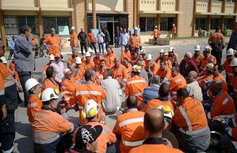اعتصام العاملين بالشركة القومية للأسمنت بسبب إيقاف مصانعها عن العمل