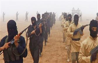 اعتقال شابتين إسرائيليتين لاتصالهما بتنظيم داعش