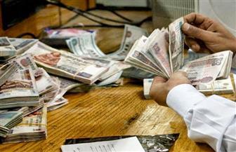 17٫6 ٪ زيادة قيمة صافي رأس المال المستثمر للهيئات الاقتصادية عام 2015/2016