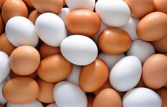 بعد ارتفاعه بشكل مفاجئ.. توقعات بانخفاض سعر البيض خلال الأسبوع الأول من رمضان