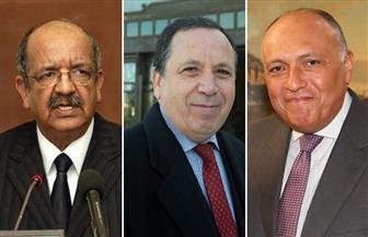 لقاء ثلاثي لوزراء خارجية مصر والجزائر وتونس يومي 5 و 6 يونيو المقبل بالجزائر