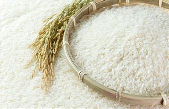 شحاتة: سعر الأرز في تناقص.. لدينا اكتفاء من المنتج  المحلي