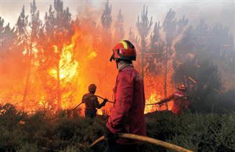 الصين تستخدم ١٢ طائرة والآلاف من رجال الإطفاء للسيطرة على حريق بإحدى الغابات