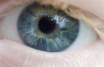 بُشرى لمرضى السكر والمكفوفين.. شبكية اصطناعية لإعادة البصر