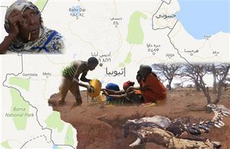 الجفاف يضرب بلد الفيضان.. وعظام المواطنين تدق طبول الفرح  بالسد الإثيوبي
