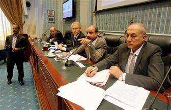 زراعة النواب توصي بإلغاء عملية دمج شركة السلام للدواجن مع شركة مقاولات