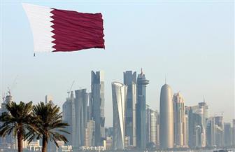 وزير خارجية الإمارات: استراتيجية قطر في التعامل مع أزمتها محكوم عليها بالفشل
